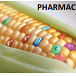B pharmacy whatsapp jokes