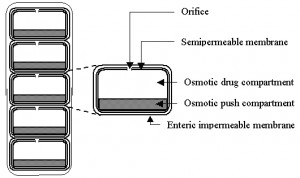APPROACHES TO COLON-SPECIFIC DRUG DELIVERY [Ceutics notes]