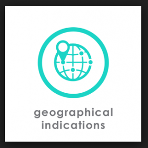 Geographical Indication - IPR Notes PDF PPR
