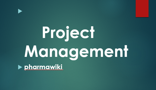 Introduction to Project Management Power Point Presentation PPT PDF