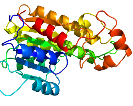 Protein Homology Modelling PPT PDF for students researchers scholars images